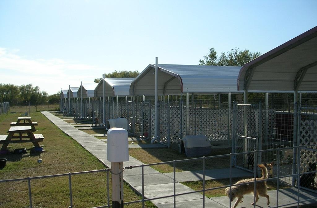 Home - Peewee's Pet Adoption World & Sanctuary, Inc